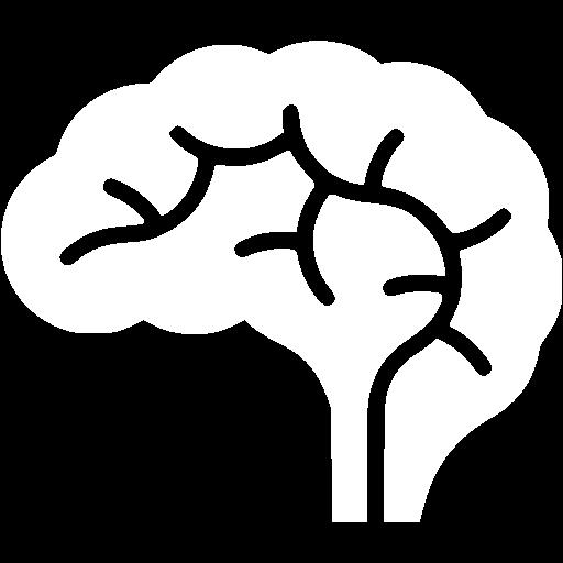 brain-512